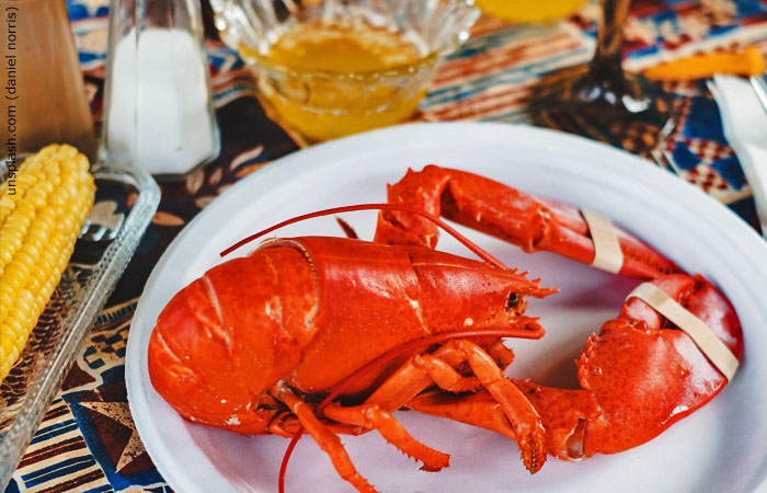 nantucket seafood lobster